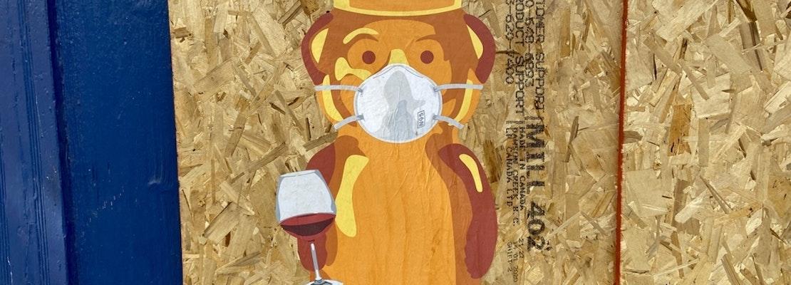 Street artist fnnch installs series of COVID-19-themed honey bear murals