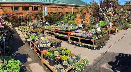 Sloat Garden Center likely to close for new mixed-use development