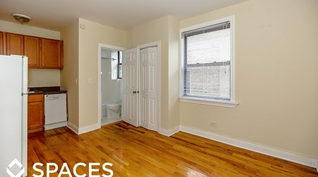 Budget apartments for rent in Lake View East, Chicago