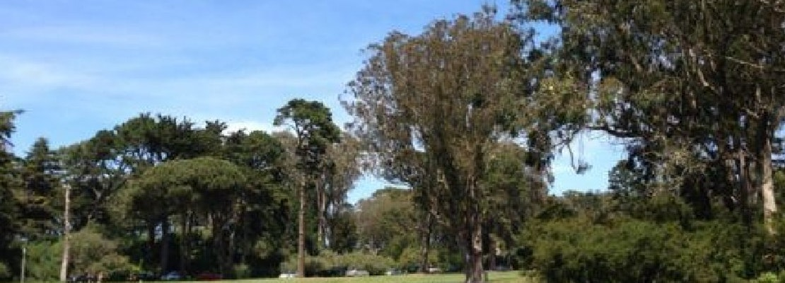 City pushes forward to identify park lands for future homeless tent villages