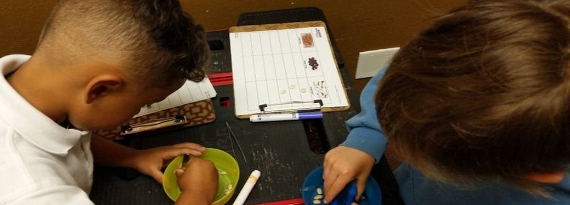 The 4 best summer camps in Sunnyvale
