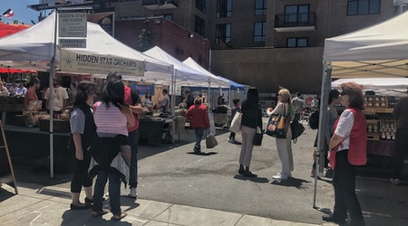Tractor, pull: revived farmers market hopes to lure locals back