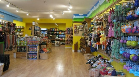 Pittsburgh's top 3 pet stores to visit now