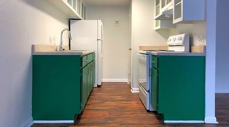 The most affordable apartments for rent in Bouldin, Austin