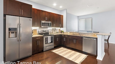 Apartments for rent in Tampa: What will $2,500 get you?