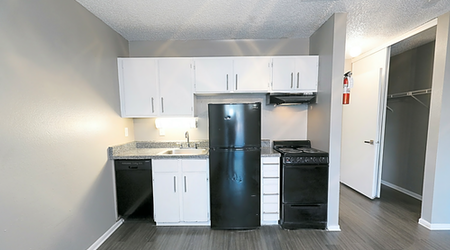 Renting in San Antonio: What's the cheapest apartment available right now?