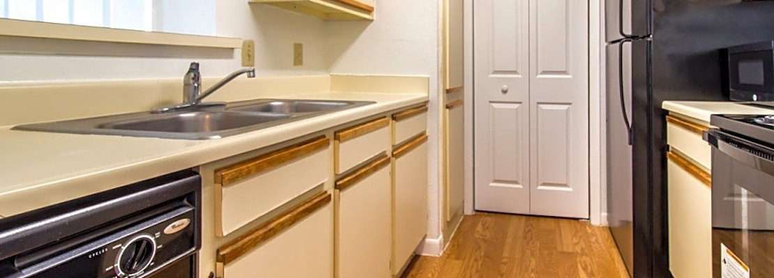 What apartments will $1,000 rent you in South Semoran, this month?