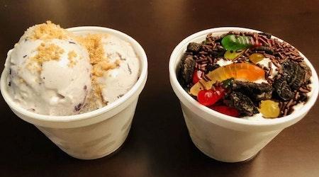 The Revolution Ice Cream Company brings ice cream to Swann Estates