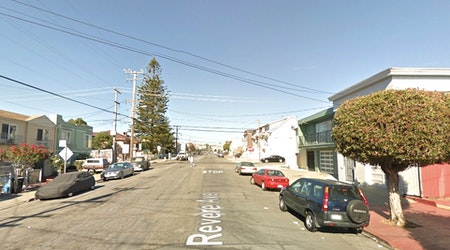 Man attacks woman with machete after attempted eviction