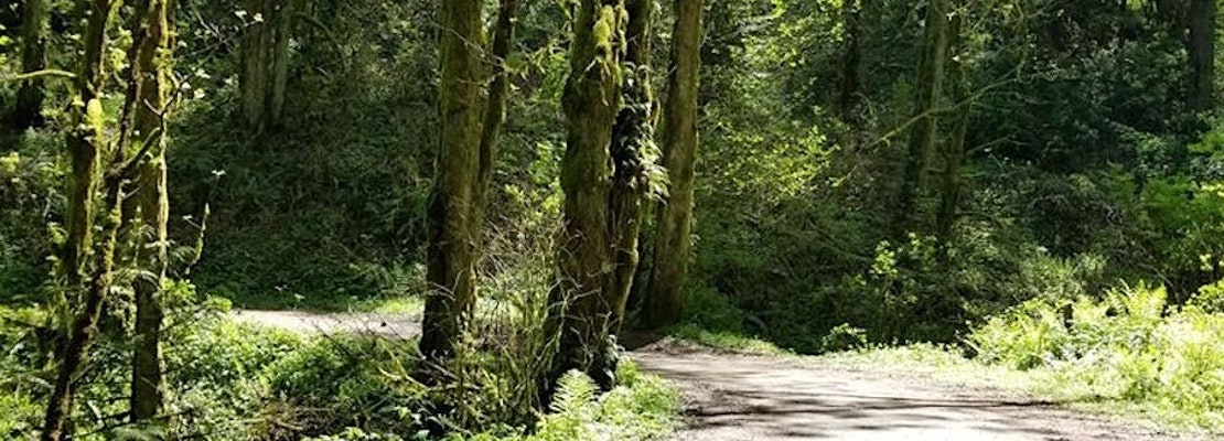 The 4 best parks in Portland