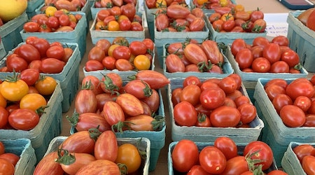 Indianapolis' top 4 farmers markets, ranked