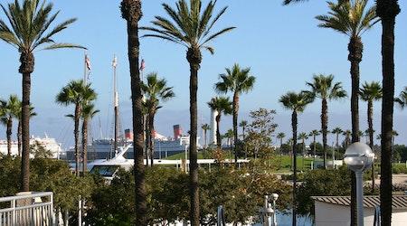 Top Long Beach news: Ex-sergeant accidentally shoots himself; stabbing, shootings injure 4; more