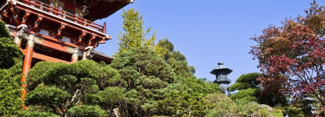 Japanese Tea Garden to reopen, with new restrictions in place