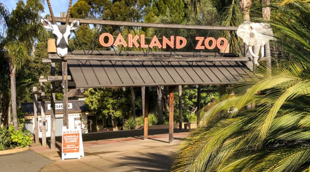 5 options for stay-at-home fun in SF & Oakland: Wednesday, September 9