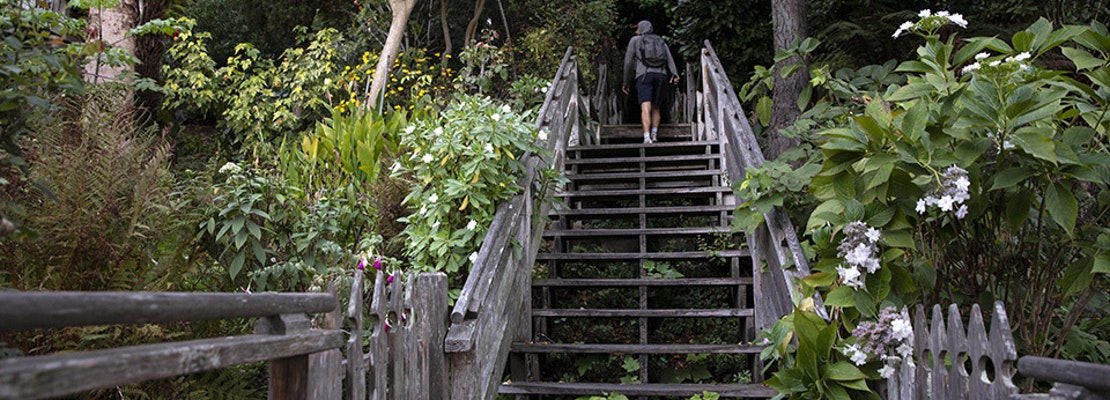 Get back outside with these six urban hikes in San Francisco